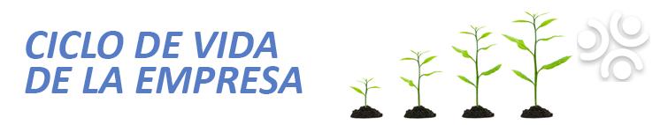 Ciclo De Vida Empresarial. Servicios Contables y Tributarios En Chile